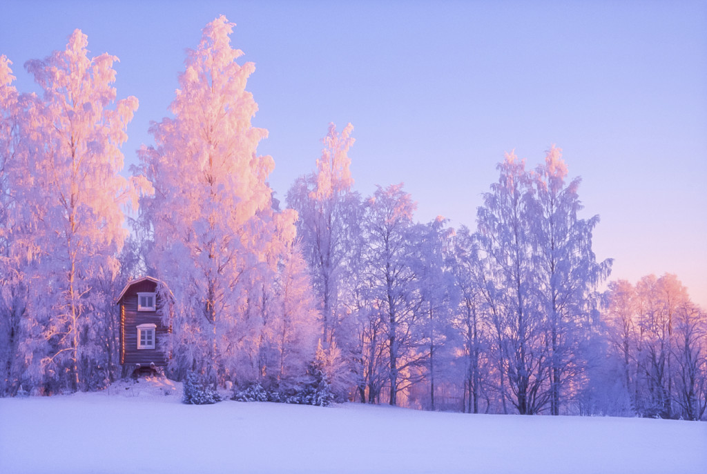 Frozen Landscape - iStock_000055009350_Medium